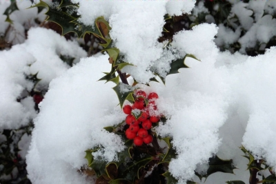 Metheringham In The Snow - A photo essay